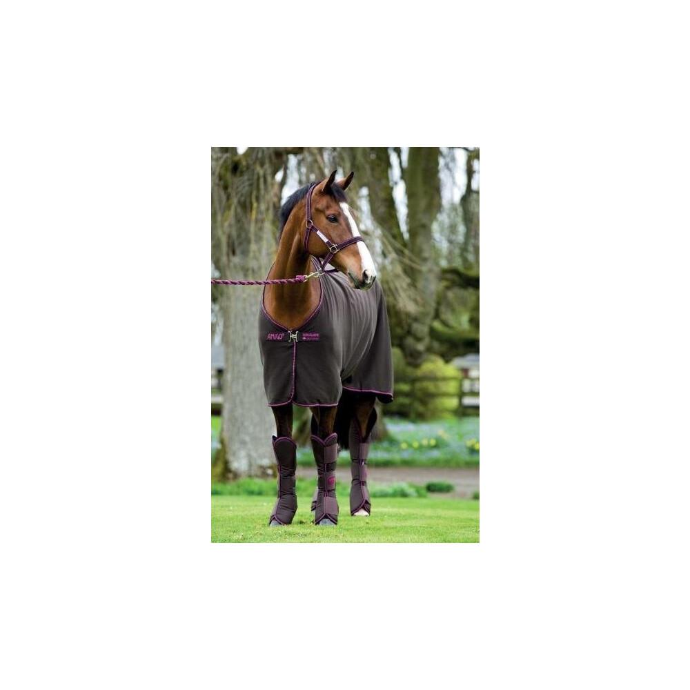 Horseware Amigo Amigo Stable Sheet in Chocolate/Raspberry
