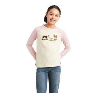 Ariat Kids Pasture T-Shirt - Oatmeal Heather/Ash Rose in Oatmeal Heather/Ash Rose