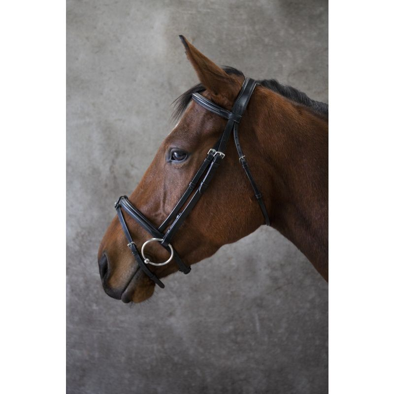 Eco Leather Eco 40 Classic Comfort Flash Bridle - Brown in Brown