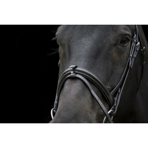 Eco Leather Eco 40 Classic Comfort Flash Bridle - Black in Black